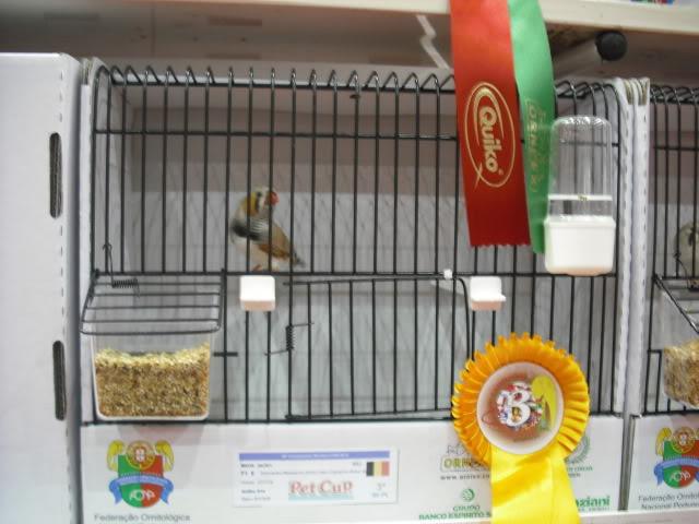 Diário do 58º Campeonato Mundial de Ornitologia Matosinhos 2010 DSCF3967