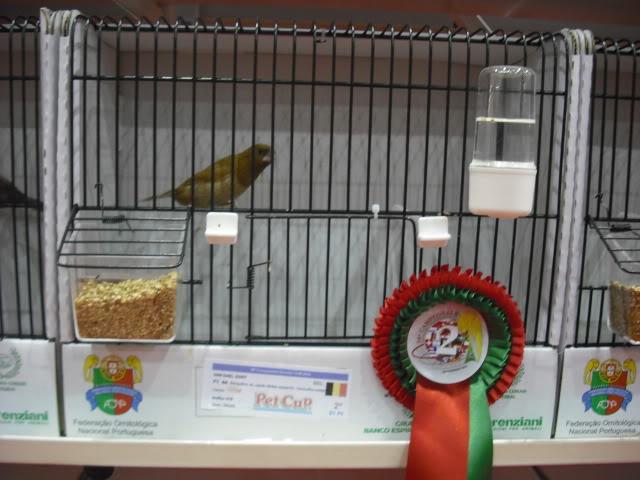 Diário do 58º Campeonato Mundial de Ornitologia Matosinhos 2010 DSCF4009