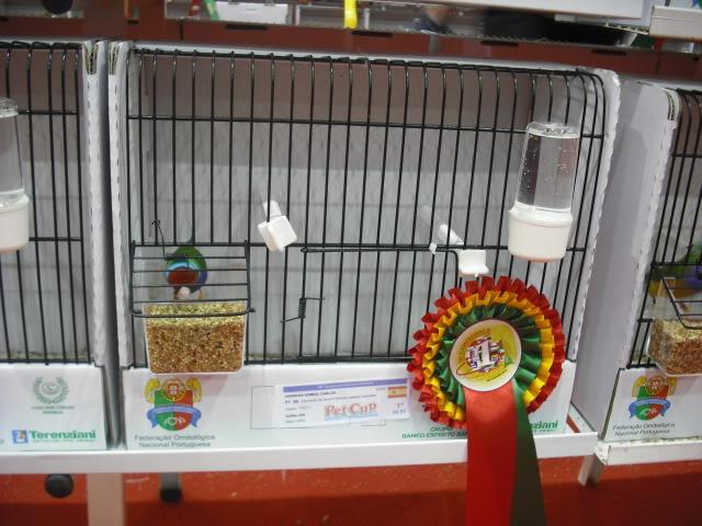 Diário do 58º Campeonato Mundial de Ornitologia Matosinhos 2010 DSCF4045