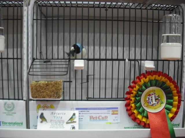 Diário do 58º Campeonato Mundial de Ornitologia Matosinhos 2010 DSCF4066