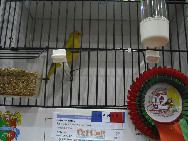 Diário do 58º Campeonato Mundial de Ornitologia Matosinhos 2010 DSCF4139