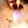 Smallville {Série} SV7