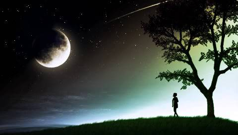 Shprehni ndjenjat e momentit me 1 foto.. - Faqe 7 PSP_Wallpaper_Moon_Stare_by_jonmusk