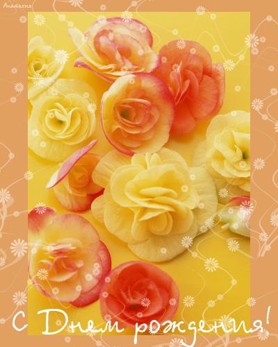 Алену-Хризантемку с днем рождения!!!  - Страница 2 8cf76e7dbbfec4a3c386005bd3ee7456