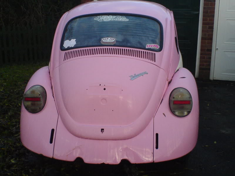 The '77 Pink Bug DSC00172