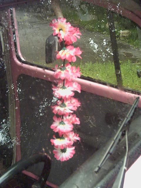 The '77 Pink Bug RachsBug006