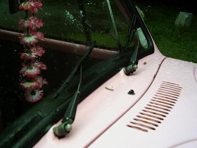 The '77 Pink Bug RachsBug007
