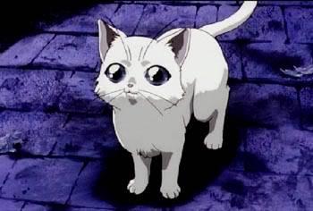 Imagens Dos Personagens Cat