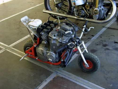 Galerie des horreurs Pocket_bike