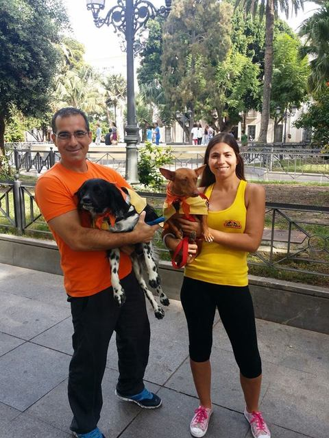 Canis - Paquito  12043042_850324831731947_106432165163902211_n_zps5dkkx1ff