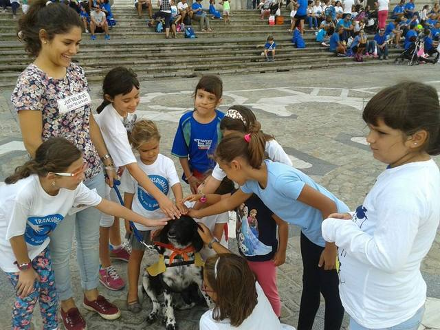 Canis - Paquito  12088200_850324785065285_4441394564467041085_n_zpsicz8ddpg