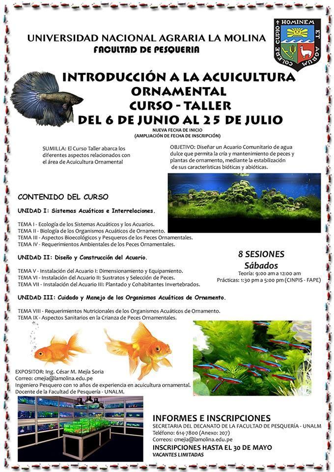 Curso - taller Acuicultura Ornamental (universidad Agraria la Molina) 10384132_10206762083281880_8691637590933433644_n_zpsu8yzonqp