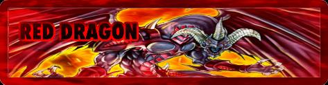 Red Dragon Crimson Dorm