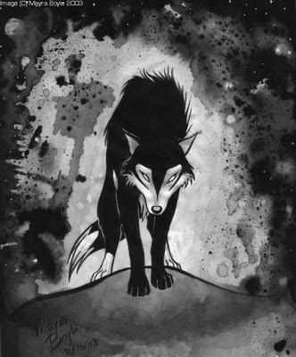 The Thorn Tree Black_Silver_Wolf
