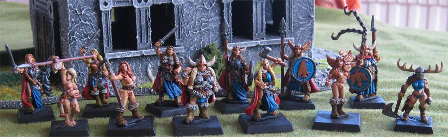 folketsfiendes Norse warband (New pics 101130) Norsegroup