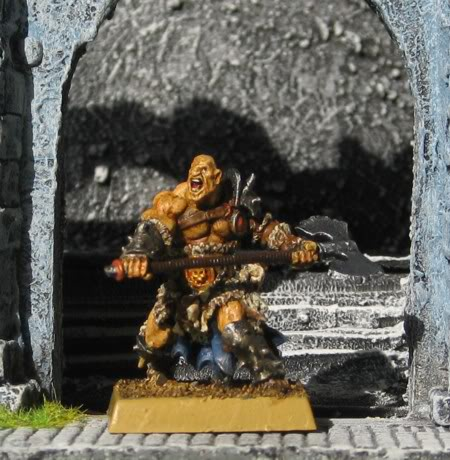 folketsfiendes Norse warband (New pics 101130) NO_berserker_fr