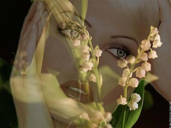 slike cvijeca A089aff64f205a396eb481f33f18e304_we