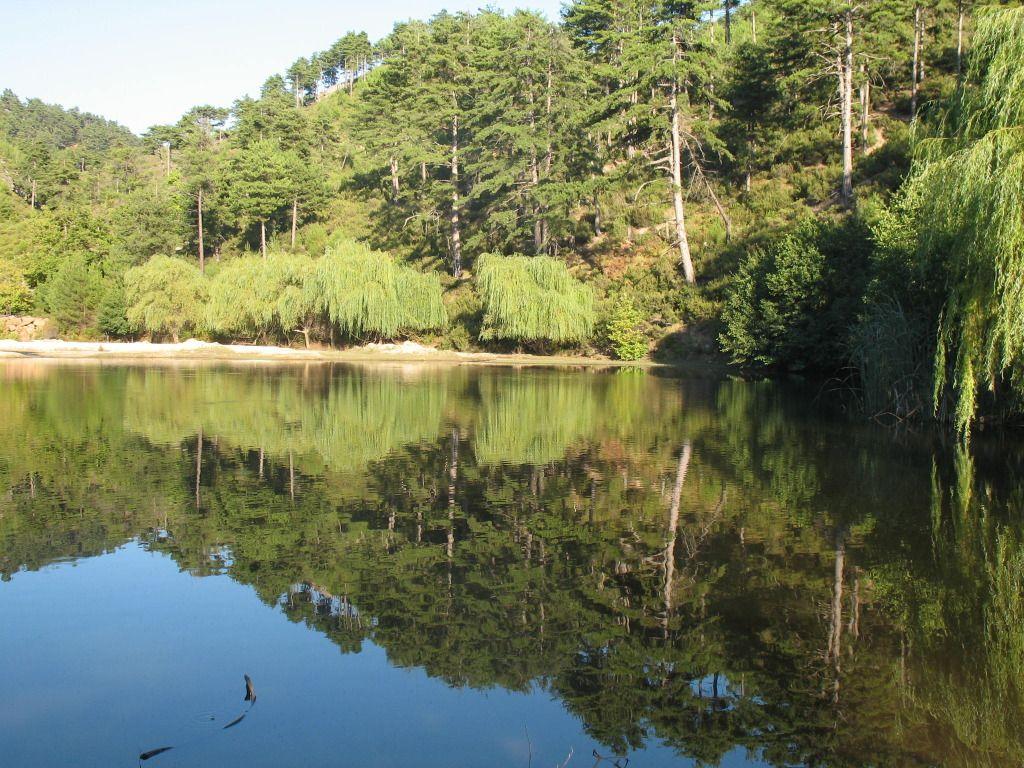 Fotografije jezera IMG_1561