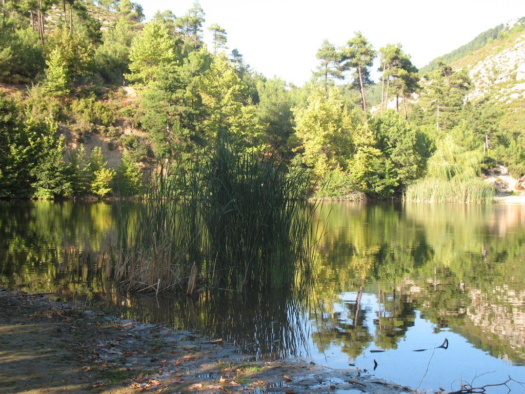 Fotografije jezera IMG_1567