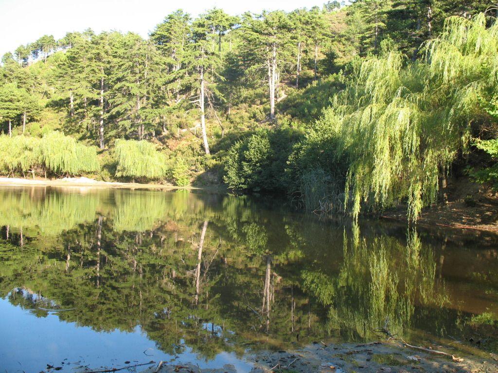 Fotografije jezera IMG_1568