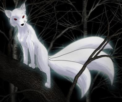 Aimee ((not a ninja Just a normal person althought she can fight)) White_3tail_fox