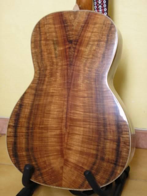 Les guitares d'un amateur passionné ... - Page 5 P6200078webgrand