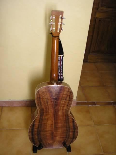 Les guitares d'un amateur passionné ... - Page 5 P6200080webgrand