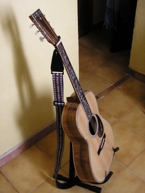 Les guitares d'un amateur passionné ... - Page 5 P6200085webgrand