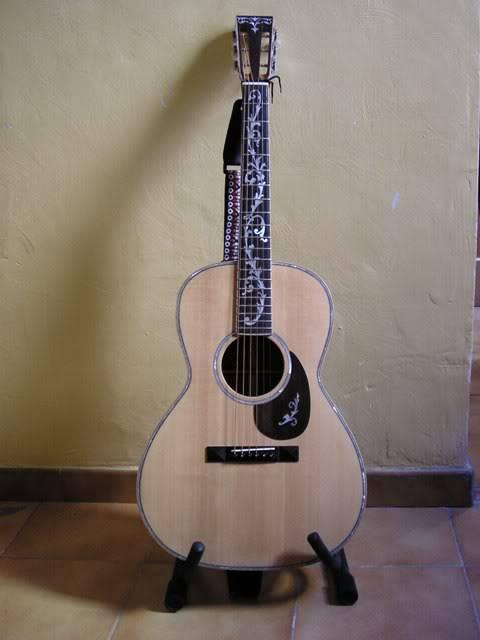 Les guitares d'un amateur passionné ... - Page 5 P6290059webgrand