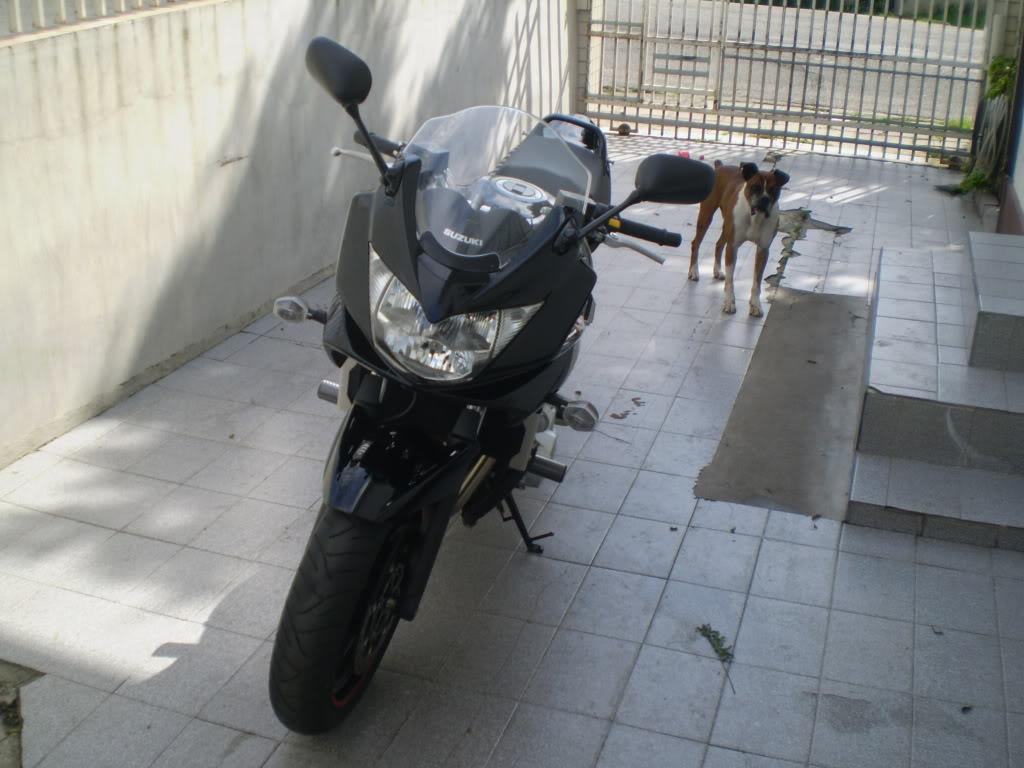 Novato ! Curitiba! P8070018