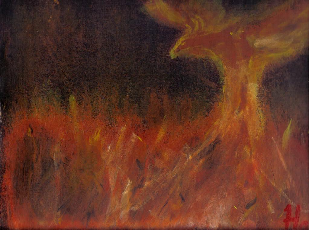 Habo's gallery Lastscan6