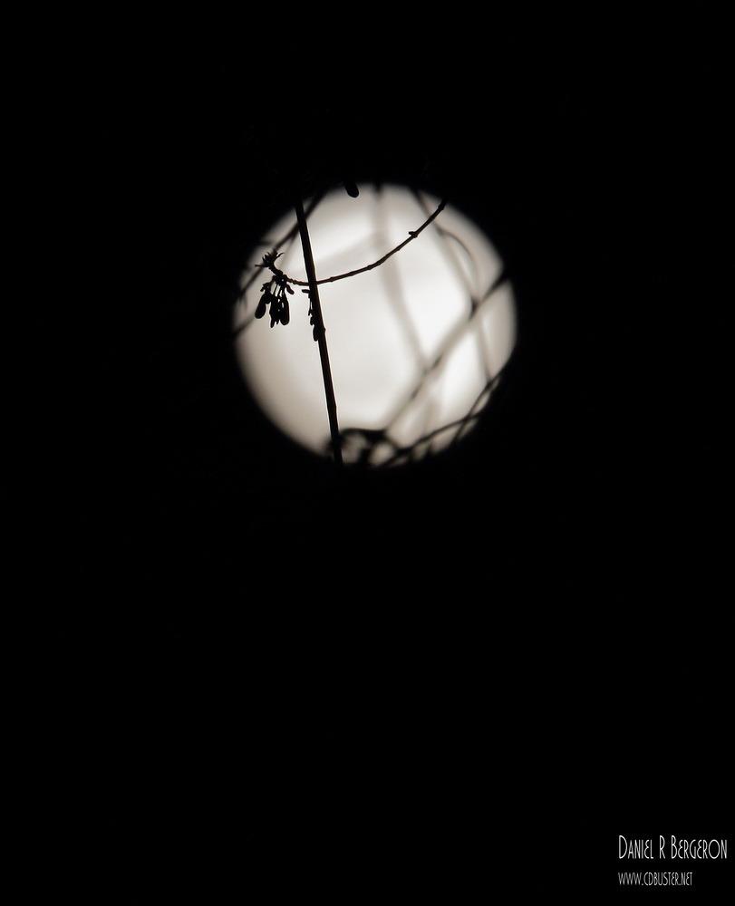 contre-jour lunaire IMG_1443