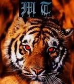 Mercyless Tiger