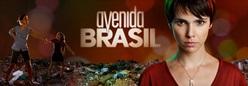 """""""ბრაზილიის გამზირი"""""""