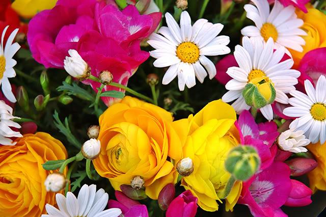Najdraži cvijet - Page 2 FlowerBouquetatLaRambladelsFlorsinB