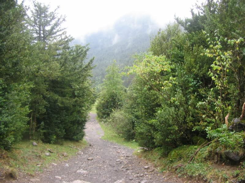 Otoño en el Pirineo catalán TORLA23-09-07025-1