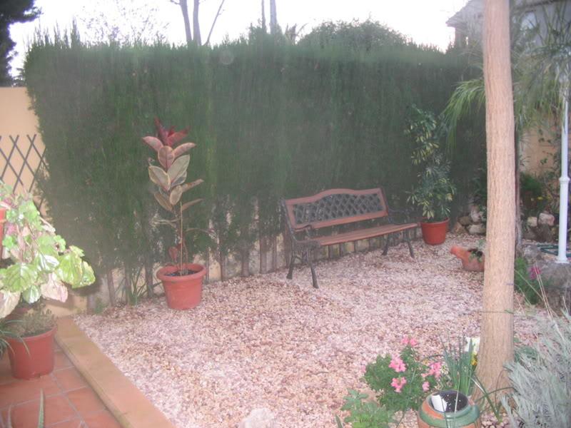Mis dos pequeños jardines Jardiin017