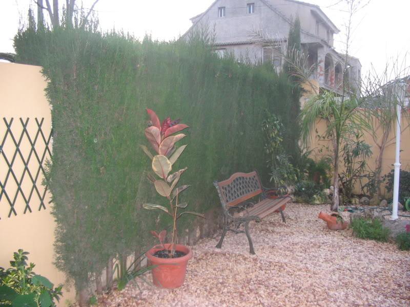 Mis dos pequeños jardines Jardiin018