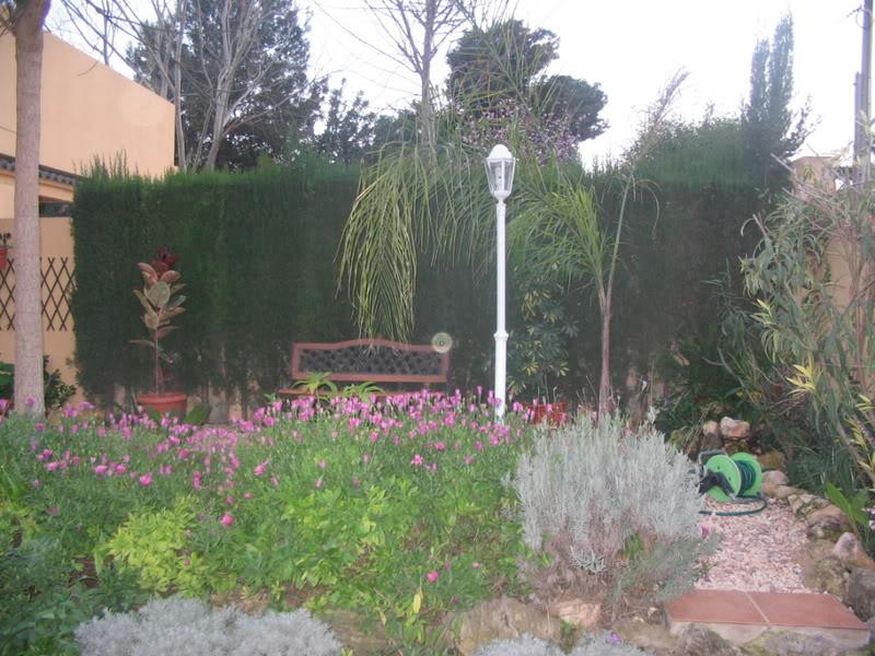Mis dos pequeños jardines Jardiin020