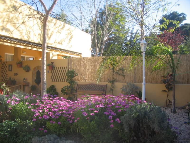 Mis dos pequeños jardines Jardiin052