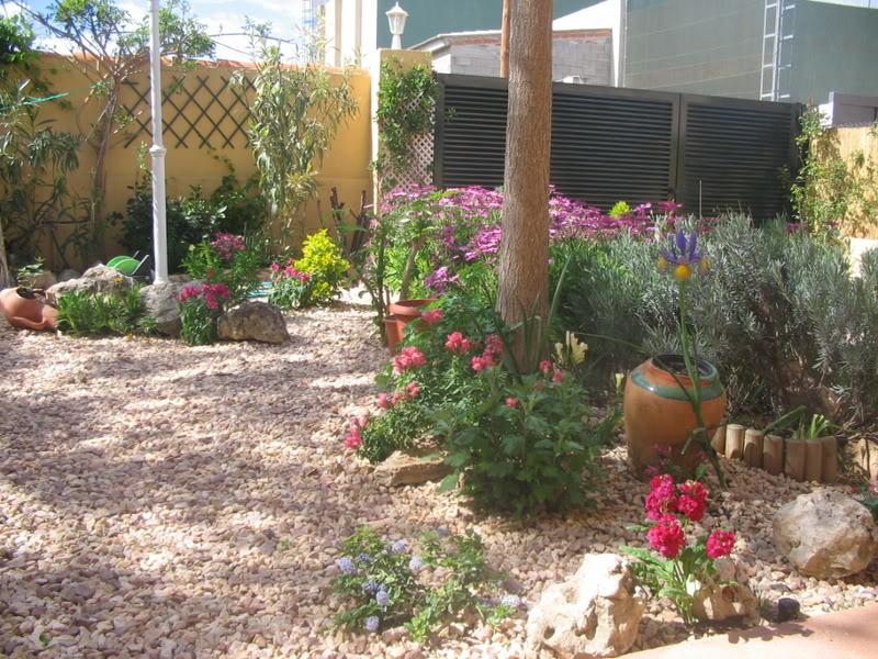 Mis dos pequeños jardines Jardiin061