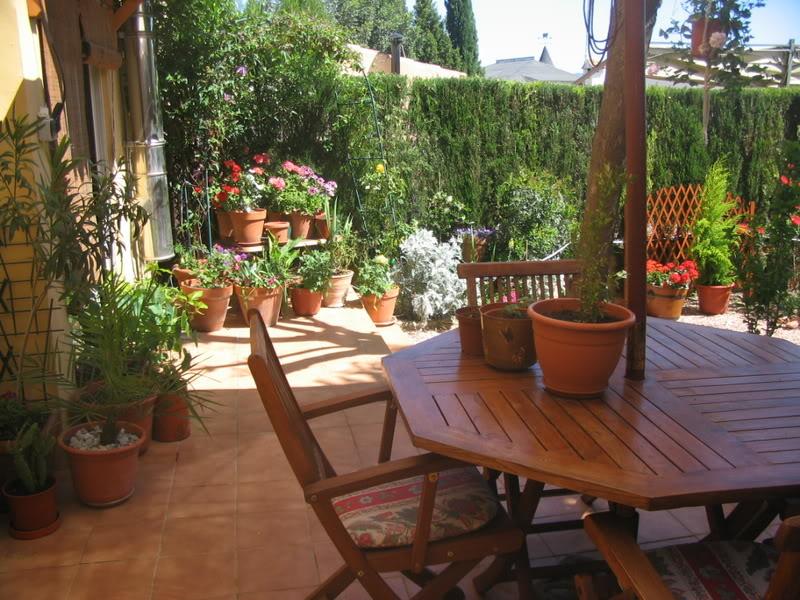 Mis dos pequeños jardines - Página 3 Jardiin130