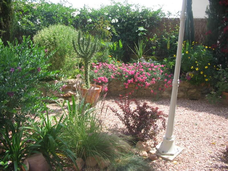 Mis dos pequeños jardines Jardiin159