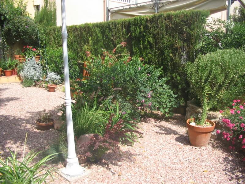 Mis dos pequeños jardines Jardiin160