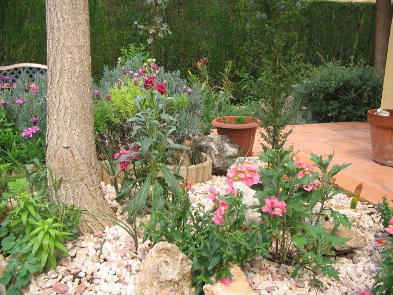 Mis dos pequeños jardines Floores003-1