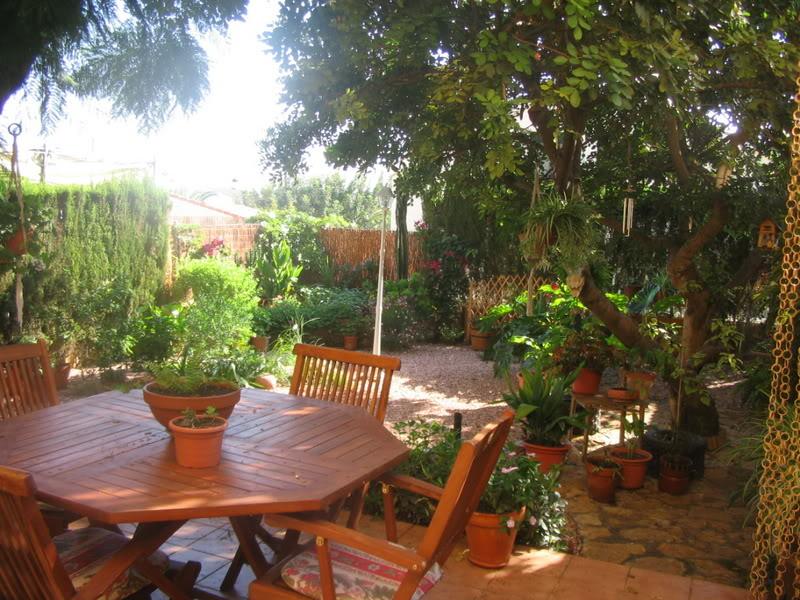 Mis dos pequeños jardines Jardiin007-2