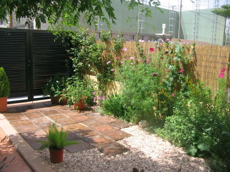 Mis dos pequeños jardines Jardiin201