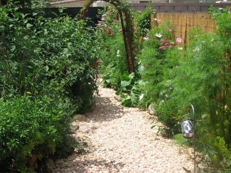 Mis dos pequeños jardines Jardiin207