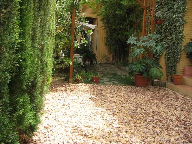 Mis dos pequeños jardines Jardindel19