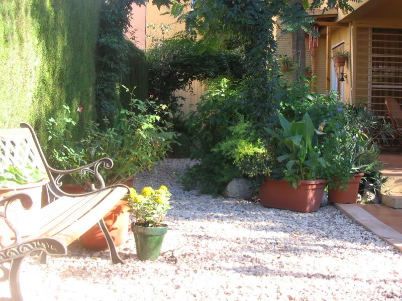 Mis dos pequeños jardines Plaantas009